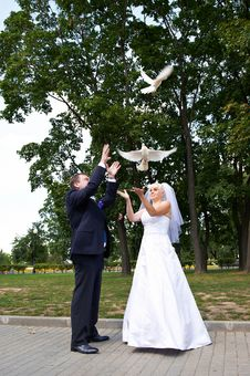 Free Newlyweds Release Pigeons Royalty Free Stock Images - 22090339