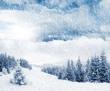 Free Winter Stock Photography - 22098922