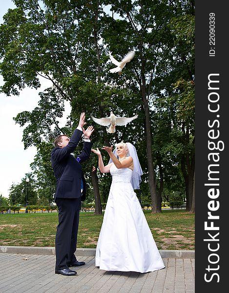 Newlyweds release pigeons