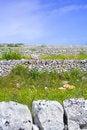 Free Sicilian Landscape Royalty Free Stock Photo - 2213605