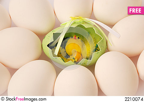 Chicken with eggs 1 Stock Photo