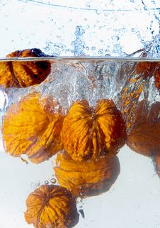 Free Nuts Fall To Water Stock Image - 2210601