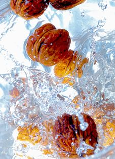 Free Nuts Fall To Water Royalty Free Stock Photo - 2210605