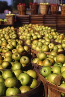 Free Green Apples In Baskets Stock Image - 2215511