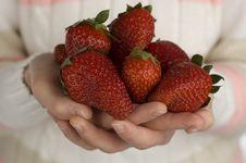 Free Strawberry Royalty Free Stock Image - 2217886