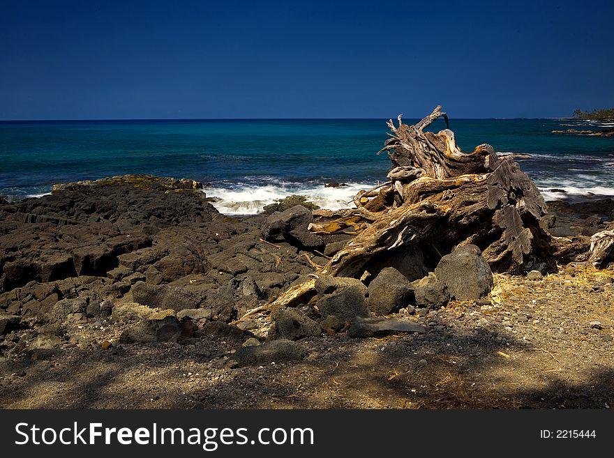 Kona Coastline
