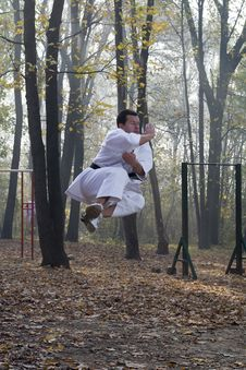 Free Karate Jump Royalty Free Stock Image - 22102736