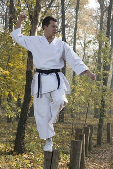 Free Karate In Forestry Royalty Free Stock Photos - 22103118