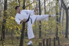 Free Karate In Forestry Royalty Free Stock Photos - 22103168