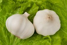 Free Garlics Royalty Free Stock Image - 22104146