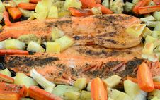 Baked Trout With Vegetables Stock Image
