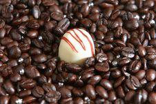 Free White Chocolate In The Middle Of Coffee Seeds Royalty Free Stock Photography - 22109387