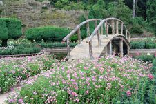 Free Beautiful Garden And A Wooden Bridge Royalty Free Stock Photos - 22115748
