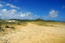 Free Bonaire Stock Image - 22118351