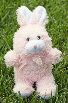 Free Fluffy Pink Easter Bunny On Grass Stock Images - 22124194