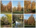 Free Autumn Collage Stock Images - 22132314