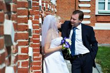 Free Happy Bride And Groom Near Red Brick Wall Stock Images - 22139594