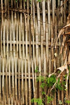 Free Bamboo Wall Royalty Free Stock Photos - 22140168