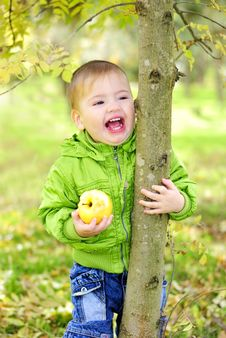 Free The Small Beautiful Boy Walks Stock Photography - 22141052