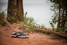 Free Old Flip Flops Royalty Free Stock Image - 22144016