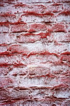 Free Wall In A Red Mouldy Royalty Free Stock Photo - 22148375