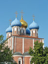 Free Golden Domes Of The Ryazan Kremlin Stock Photography - 22162882