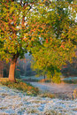 Free Frosty Morning In Early Autumn On The Lake Royalty Free Stock Images - 22162979