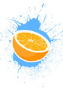 Free Ripe Oranges Stock Photo - 22169820
