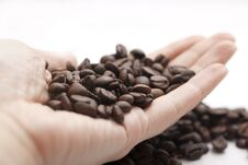 Free Coffee Beans Stock Images - 22161114