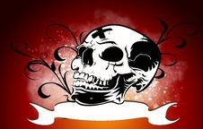 Free Skull Royalty Free Stock Image - 22162526