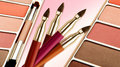 Free Make Up Brushes With Make Up Stock Photography - 22172272