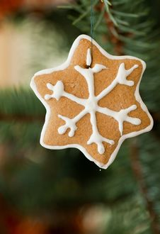 Free Christmas Ornament Stock Images - 22188764