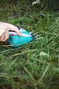 Free Cutting Grass. Royalty Free Stock Image - 22196586