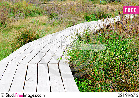 Free Wood Plank Road Royalty Free Stock Image - 22199676