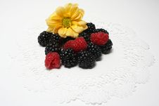 Free Berries And Flowers Stock Images - 22193934