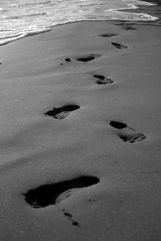 Free Foot Prints Stock Photos - 2221513