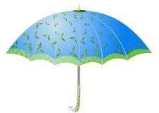 Birch Umbrellas Stock Images