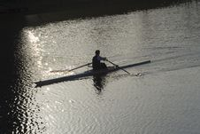 Free Evening Sculler Royalty Free Stock Photography - 2225207