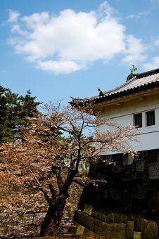 Free Japan Royalty Stock Photography - 2225242