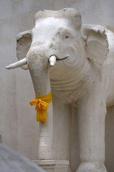 Free Elephant Stock Images - 2227574