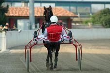Free Horse Racing Royalty Free Stock Image - 2229336
