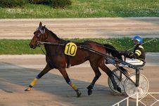 Free Horse Racing Stock Photos - 2229453