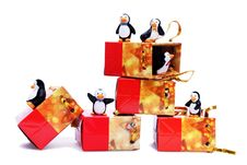 Free Penguins Royalty Free Stock Photos - 22201368