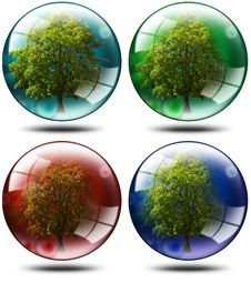 Free Set - Trees In The Globe Stock Photography - 22205032