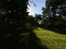 Sunrise In Summer At Central Park In Manhattan, New York, NY. Stock Photos