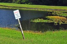 Free Warning Do Not Feed Alligator Sign. Royalty Free Stock Photo - 22239135