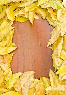 Free Frame Made From Dry Yellow Leaves Stock Photo - 22241060