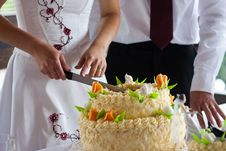 Free Cutting The Wedding Cake Stock Photo - 22249470