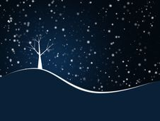 Free Snowing On Christmas Tree Stock Photo - 22249880
