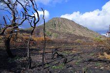 Free Koko Crater Stock Photo - 22250760